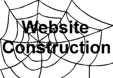 To Website Construction